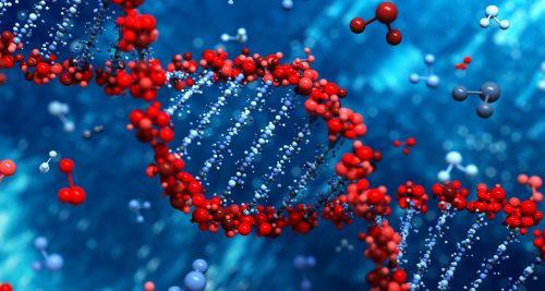 Генетические исследования, проведенные  в Якутском научном центре комплексных медицинских проблем
